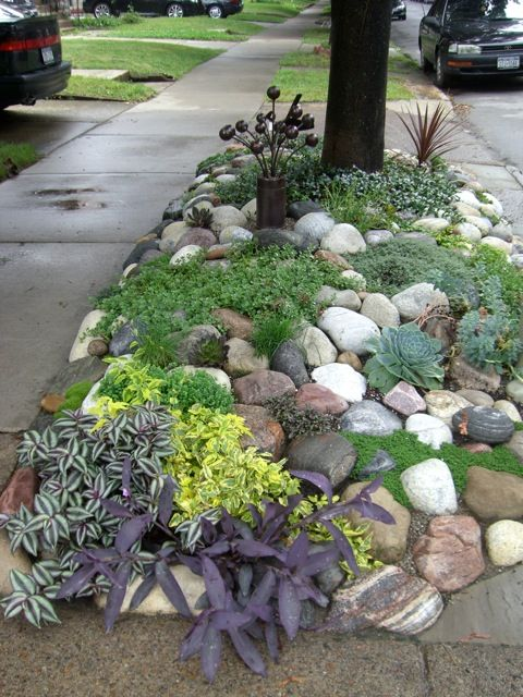 DIY: Low Maintenance Rock Garden - no link. This is perfect for a roadside spot - succulents aren't fussy and rocks won't wash away!