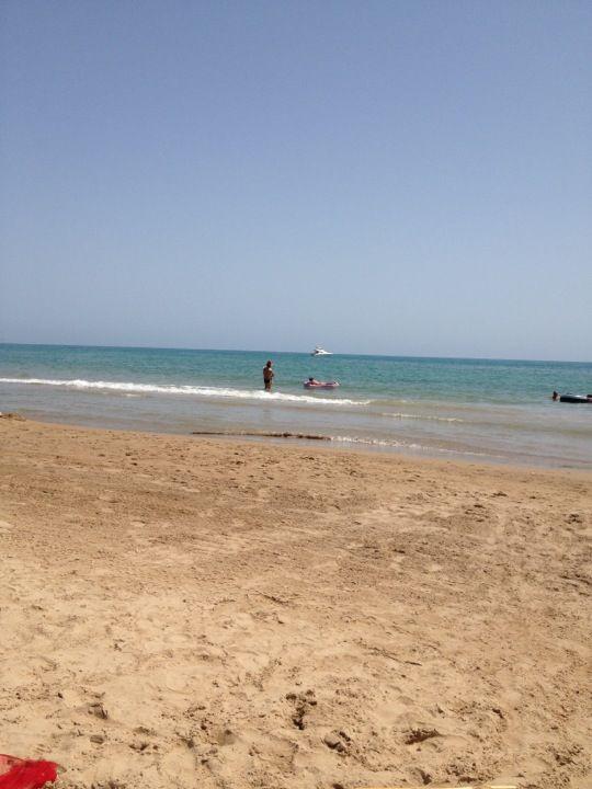 playa el 39 s vivers los viveros cerrajeros guardamar del