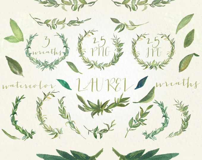 Laurel Wreaths And Foliage Watercolor Clipart Peinte A La Main