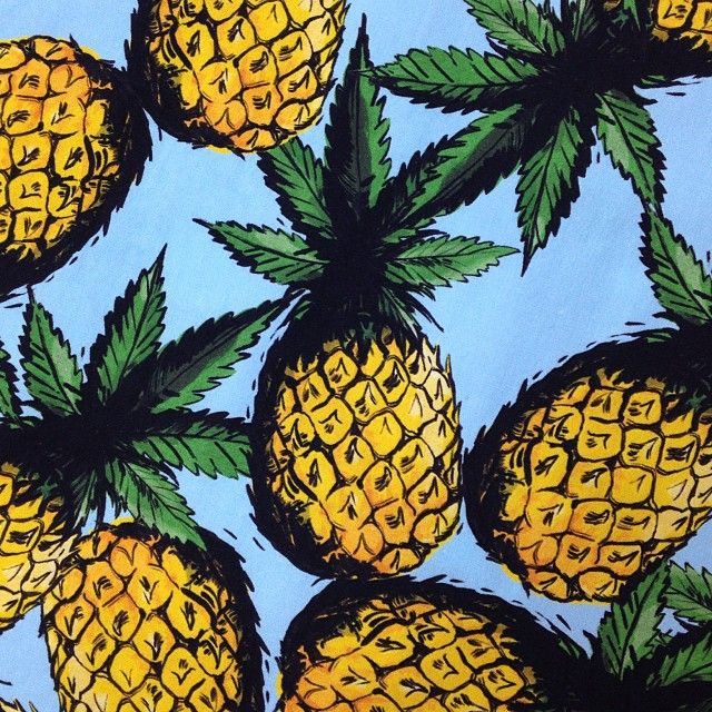 pineapples print from Stolen Girlfriends Club
