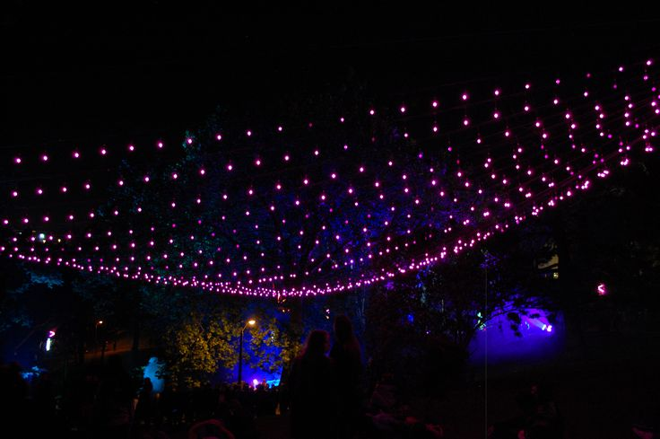 Auckland light festival