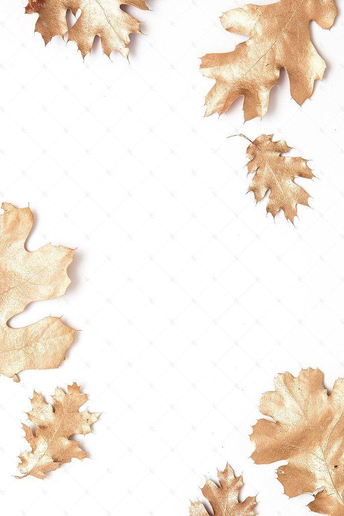 Seasonal Fall Collection #04
