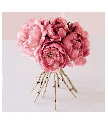 Edible Petals Gumpaste Floral Scent - Peony