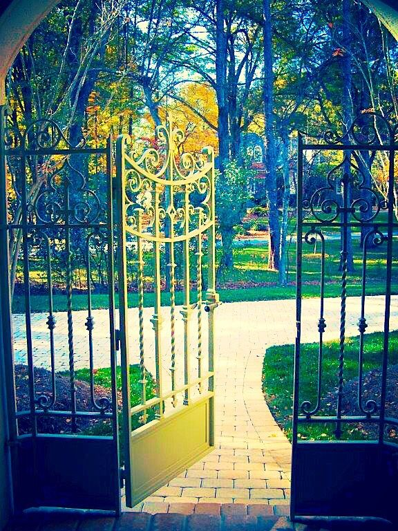 61 Best Wrought Iron Images On Pinterest Wrought Iron