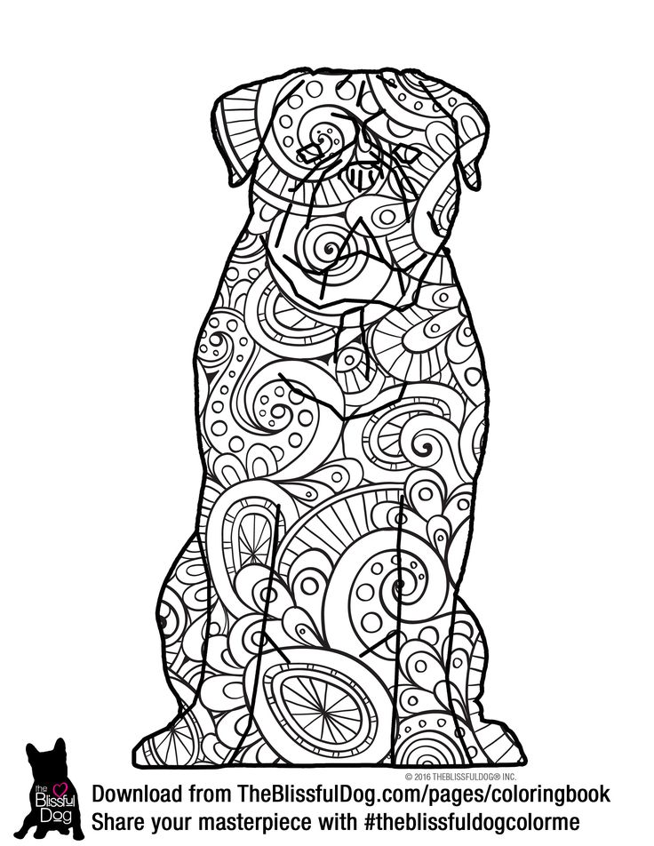 Color this happy Dogue de Bordeaux - download all 60+ breeds from the link below.