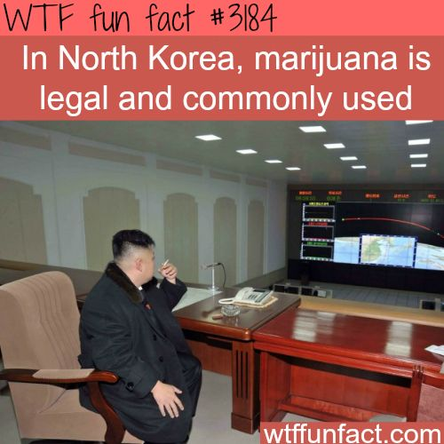 In North Korea, smoking weed is legal - WTF fun facts