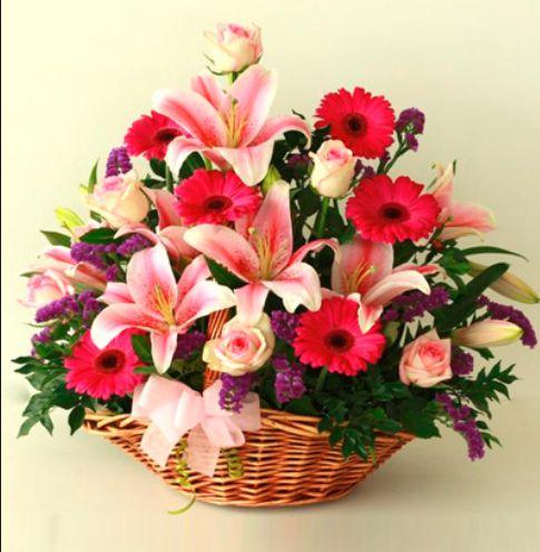 17 Best Images About Online Flower Shop Dubai On Pinterest