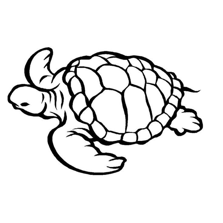 Exceptionnel Plus de 25 idées uniques dans la catégorie Coloriage tortue sur  NI38