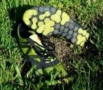Zapatillas minimalistas de montaña New Balance Minimus 00 trail. Apenas125gr. y un gran tacto, me gustan :-)
