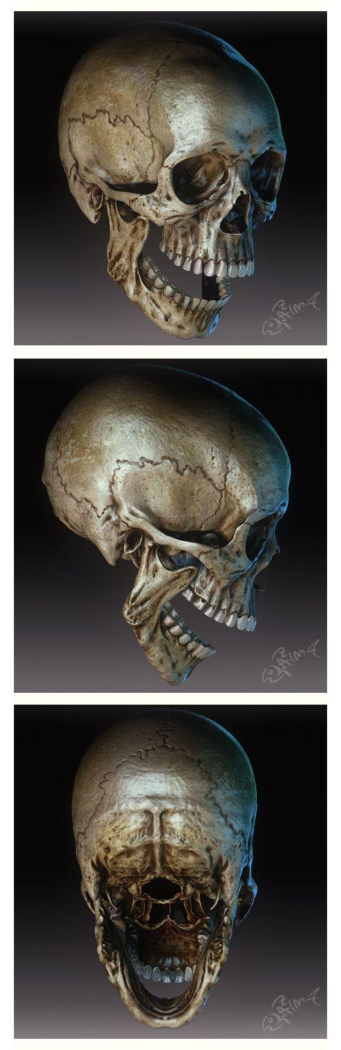Перевірити череп на оригінальні карти, оригінальні карти Розмір: 490x1...