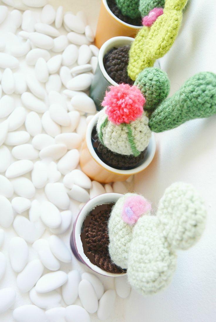 cactus en tasse