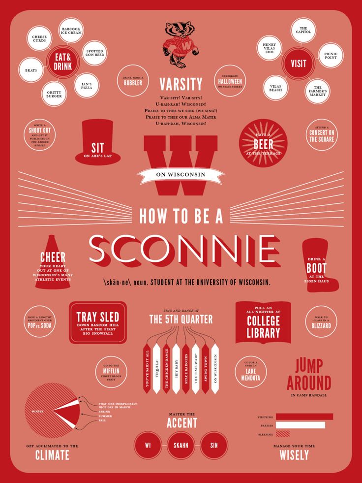 How to be a Sconnie \skän-ne\ noun. Student at the University of Wisconsin.