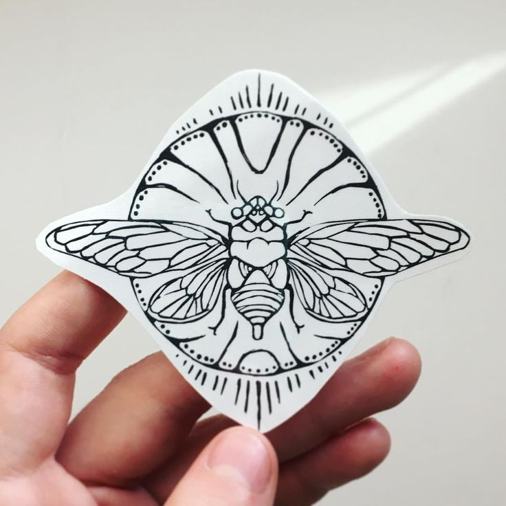 Black lined cicada temporary tattoo! NatureTats.etsy.com!!
