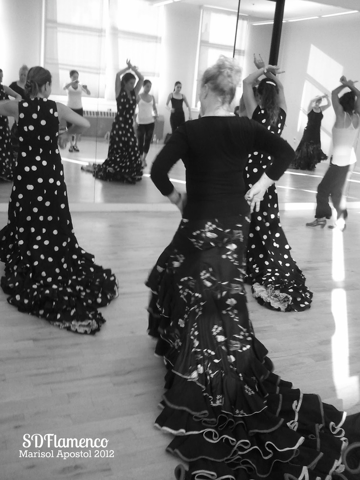 flamenco essay The evolution and culture of flamenco music flamenco style has evolved drastically over the past century flamenco essentially was born from the interaction between gypsy and non-gypsy andalusians of spain the history of oppression and changes in political thought has all contributed to the changes.