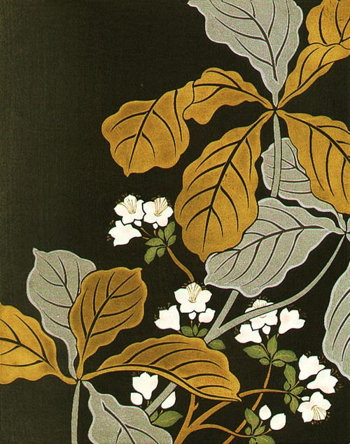 Ogata Kourin (1658-1716) 尾形光琳 Oak and Azalea Flowers 樫杜鵑化 from the series Album of Hundred Flowers by Artists of Rinpa School 琳派百華譜、1931 (originals printed in Edo period)