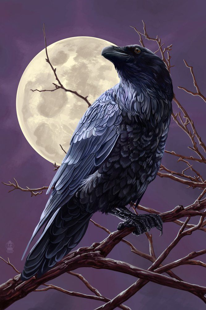 This is an image of Decisive Birds In The Moon Drawing