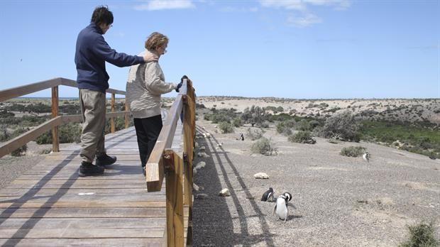 Patagonia: cinco buenos lugares para ver pingüinos - 30.10.2016   1) Punta Tombo: la más populosa   Punta Tombo. Foto: LA NACION Ciento setenta kilómetros al sur de Puerto Madryn, la mayor pingüinera... http://sientemendoza.com/2016/11/24/patagonia-cinco-buenos-lugares-para-ver-pinguinos-30-10-2016/