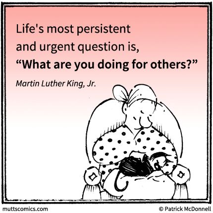 Life's most persistent and urgent questions is...