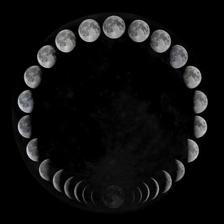 Moon phases essay