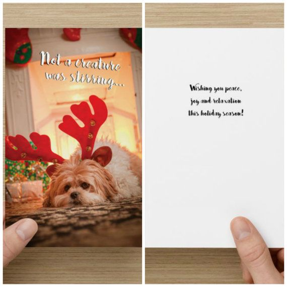 "The Frumpy Dog Holiday Card: ""Not a creature was stirring. Wishing you peace, joy, and relaxation this holiday season!"""