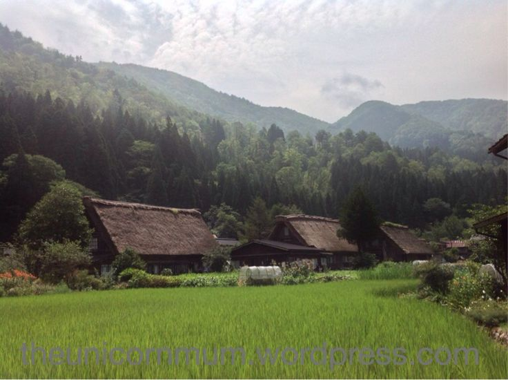 #UNESCO #Japan #shirakawago #shirakawa #beautiful #view #scenery #world #famous #field #green #nature
