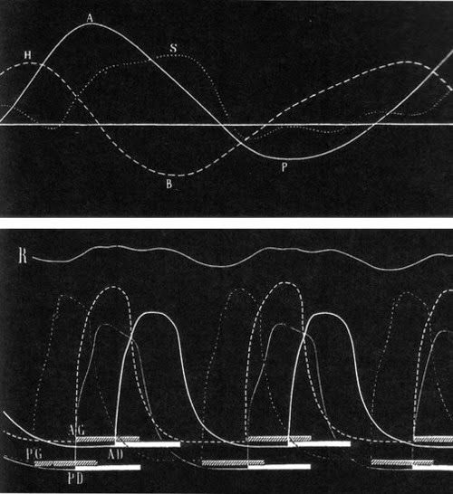 Étienne-Jules Marey & Georges Demeny  Marey & Demeny both photographers and inventors in France, working at the same time as Muybridge established a programme of research which was to lead to the creation of the 'Station Physiologique' where they would use a variety of methods to visual record and study various kinds of movement. This was all going on at the dawn of film and many of their inventions were precursors or direct ancestors of the standard film camera and projector.