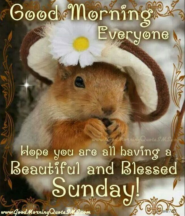 Blessed Sunday Quotes – Beautiful and Blessed Sunday Wishes