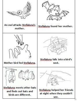 17 Best images about Stellaluna