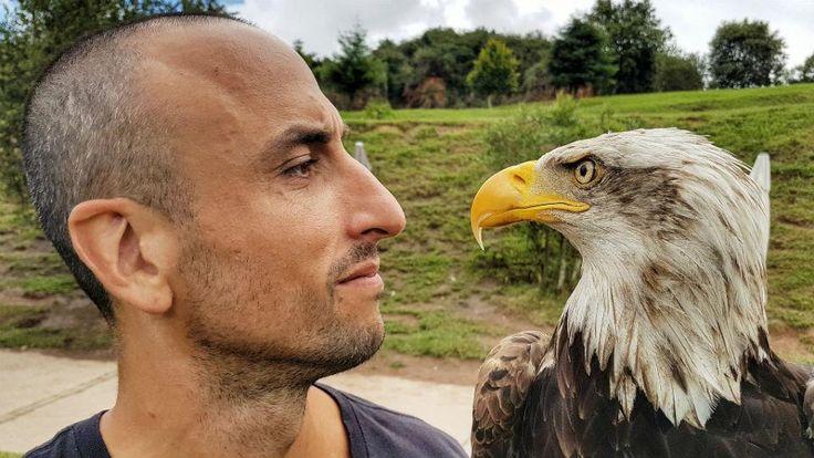 ¿Hermanos?: la foto que compartió Manu Ginóbili junto a un águila calva  La foto de Manu. Foto: @manuginobili