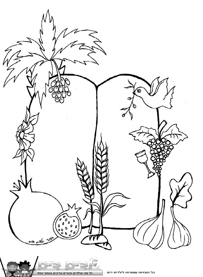 7 fruits for tu bshvat coloring pages | 112 best שבועות images on Pinterest | Embroidery, Wheat ...