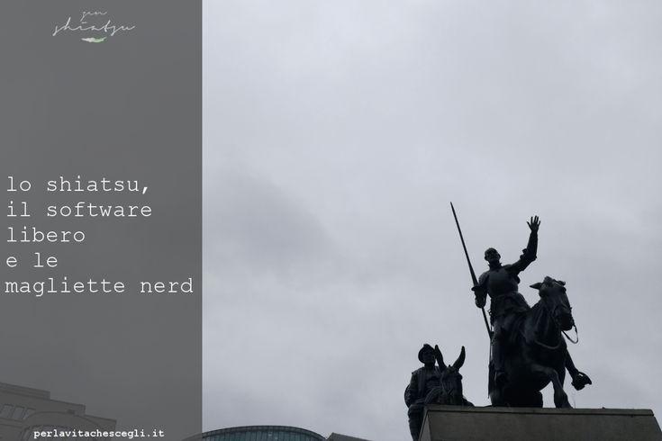 Bruxelles: linformatica e lo shiatsu