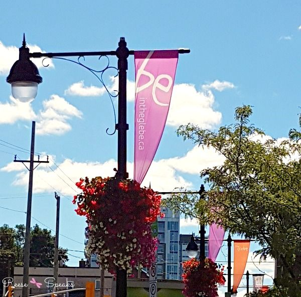 Live, work or plan on visiting #TheGlebe in Canada's capital? Check out these 5…