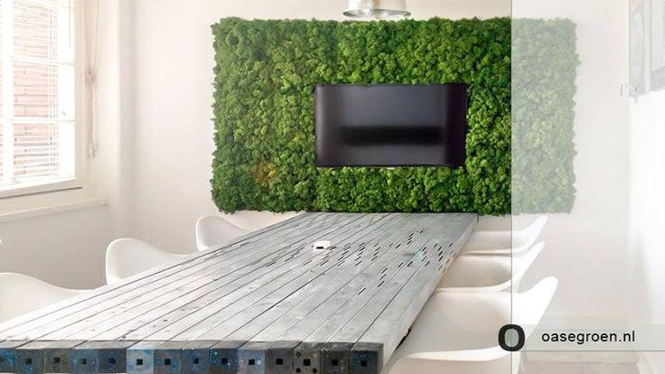 25 beste idee n over mos wand op pinterest moskunst muur tuinen en levende muren - Wandtegels levende ...