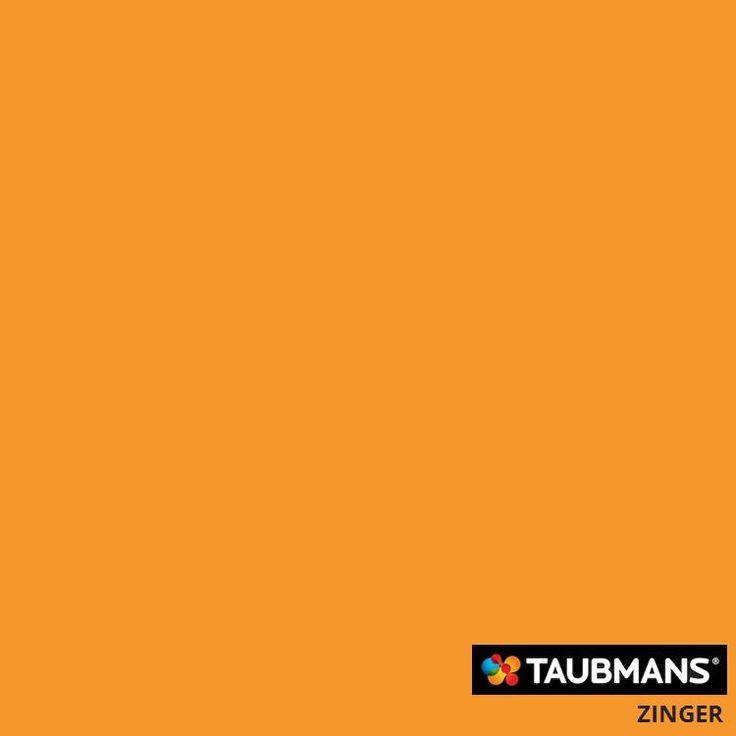 #Taubmanscolour #zinger