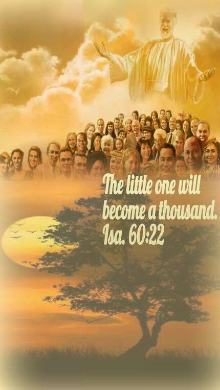 Our growth is phenomenal,  Jehovah made us grow from a small grain to a huge tree