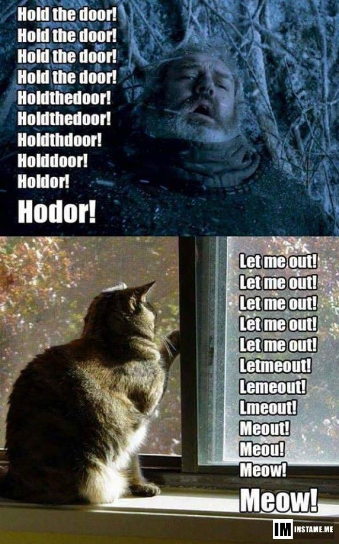 That's why cats says meow.  #instameme #meow #hodor #meme #‎instameme (BATWOMAN)