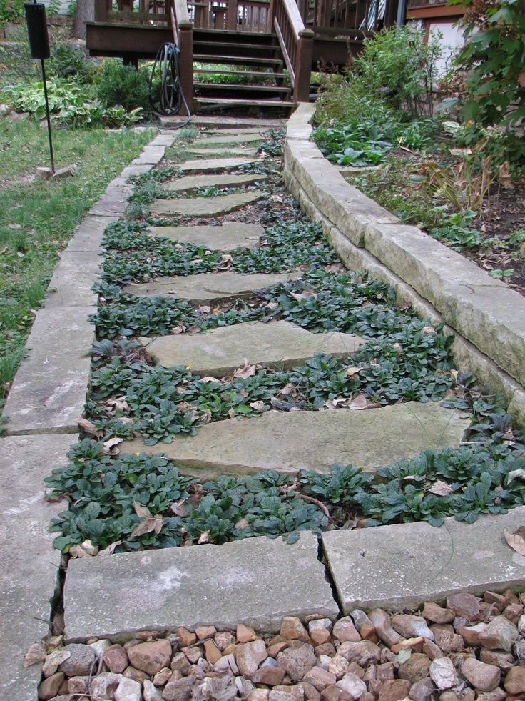 Garden Path with flagstone steps and strip stone border