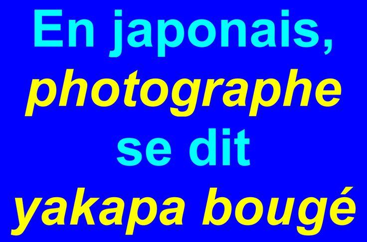 Photographe en japonais