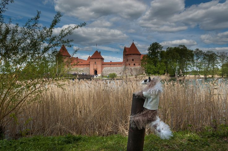 https://flic.kr/p/nuohVW | Baltic Trip of Raccoon Pedro | Lithuania | Trakai Island Castle | Baltic Trip 2014. Photo by World Wide Gifts (www.world-wide-gifts.com). See more about Raccoon Pedro's travelling at instagram.com/worldwide_souvenirs/