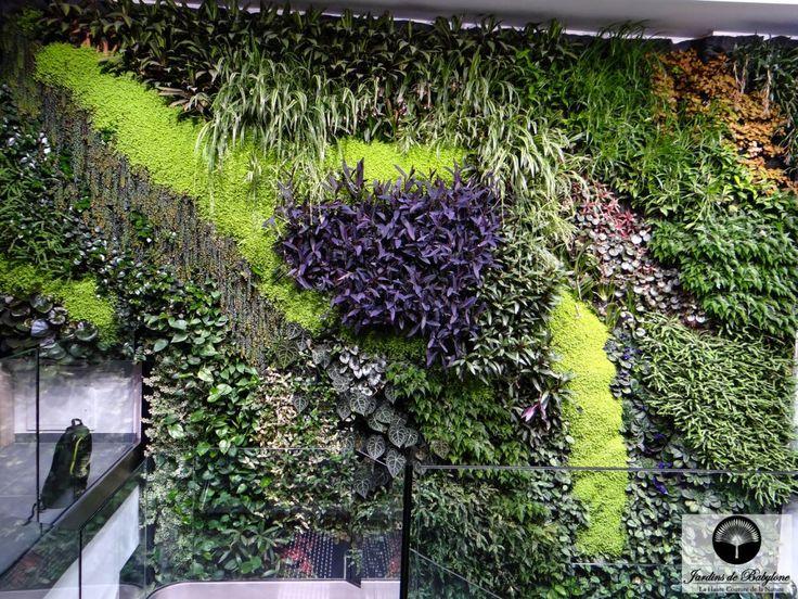 Les 37 meilleures images du tableau Mur végétal Intérieur sur ...