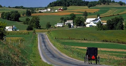 Amish Country - Holmes County, Ohio. The largest Amish settlement in the world. (It's true, look it up)