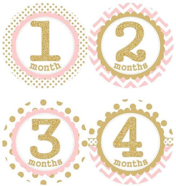Pink and Gold Baby Monthly Milestone Stickers