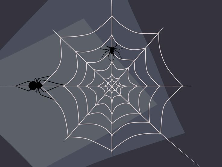 Отправить открытки, открытка паутина