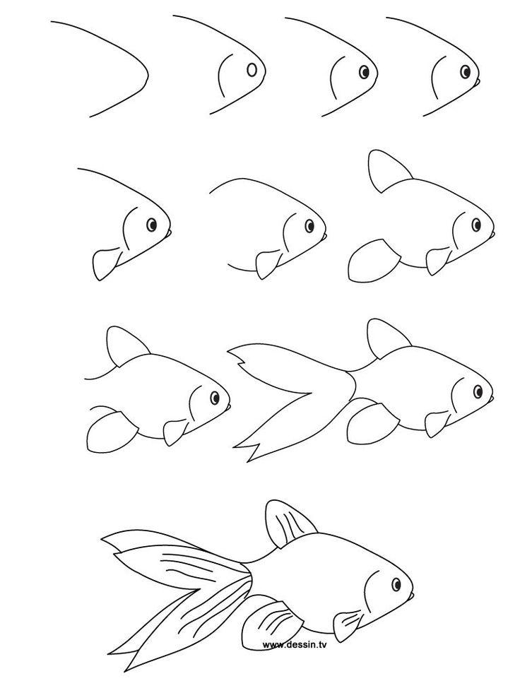 dessin poisson-rouge