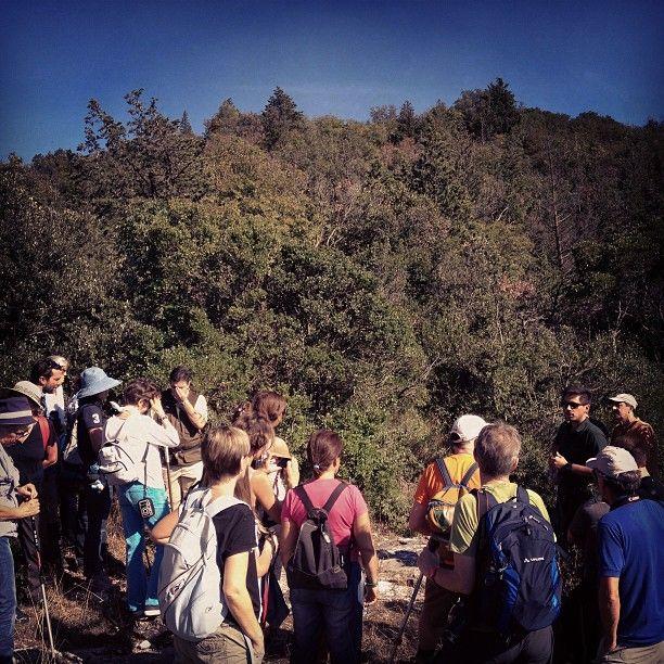 Esplorando Monte Cotrozzi