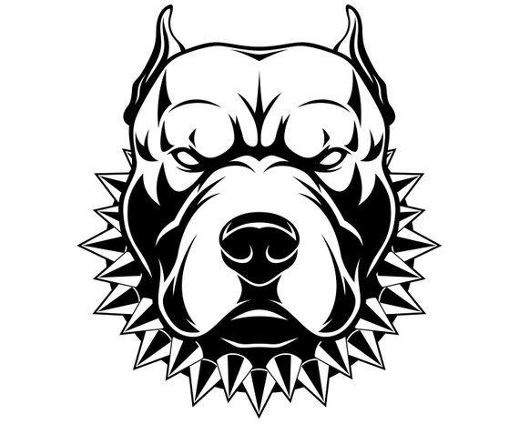 Pitbull Pit Bull Terrier Dog Cartoon Svggraphicsillustration