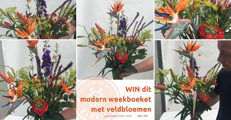 Elke week heeft meester-florist Steven Blavier een weekpromotie: een boeket bloemen voor ieders budget ..... De promotie van deze week is een modern veldboeket voor 19,95 euro. Dat kan je vanaf nu aankopen bij bloemen Blavier in Gingelom. En als je meedoet aan de wedstrijd met deze link http://wedstrijd.bloemenblavier.be/ref/x7204827 maak je zelfs kans om dit boeket te winnen .... bloemen Blavier, bloemen zoals jij bent !