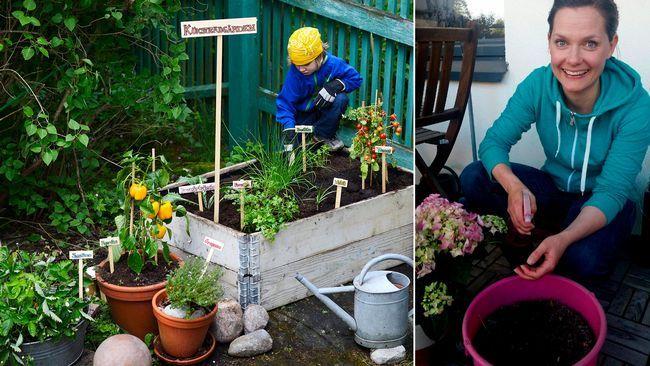 För den som är odlingssugen men saknar trädgård finns det nu ett nytt sätt att kunna påta i jorden. Genom en förmedling på nätet kan den som vill odla få kontakt med villaägare, som gärna delar med sig av sin trädgård.