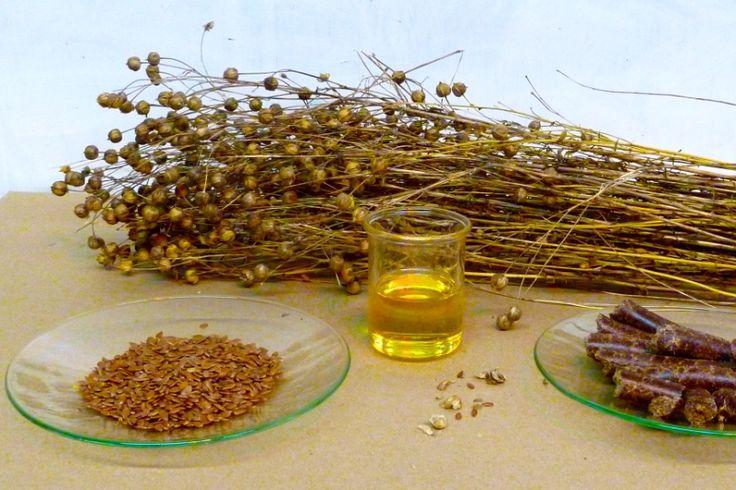 Olej lniany w kontekście pielęgnacji zdrowia