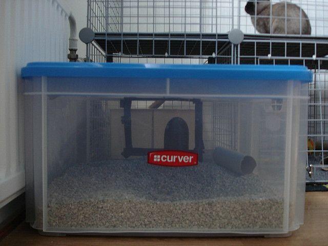 bunny digging box idea